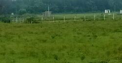 Sigaram Farms